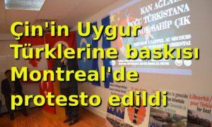 Denunciation of China's pressure on Uighurs