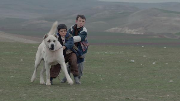 Sivas filminde çocuk yıldız Doğan İzci oyunuyla umut veriyor.