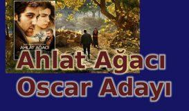 Ahlat Ağacı Oscar'a Aday