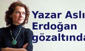 Yazar Aslı Erdoğan gözaltında
