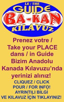 ba-kan-dikey-uc-dil-250