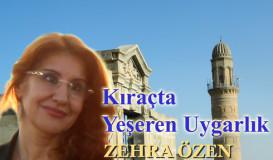 Diyarbakır'da güvercin kültürü